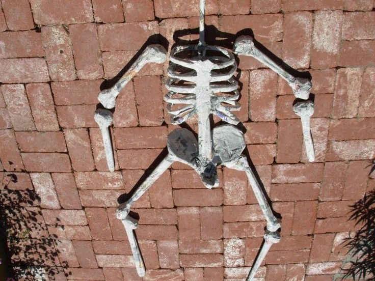 a skeleton create instructions